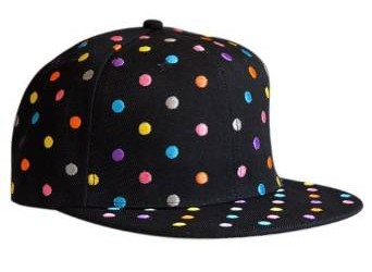 2015- 2016 snapback hat