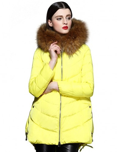 yellow coat 2017